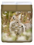 Young Coyote Canis Latrans In A Forest Duvet Cover