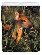Young Deer Laying In Grass Duvet Cover