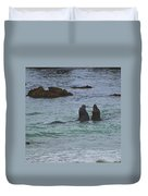 Young Elephant Seals Sparring Duvet Cover