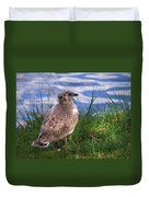 Young Gull Duvet Cover