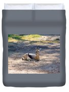 Young Ibex Duvet Cover