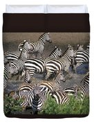 Zebra At Waterhole Duvet Cover
