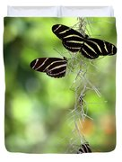 Zebra Butterflies Hanging Out Duvet Cover