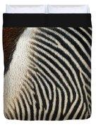 Zebra Caboose Duvet Cover