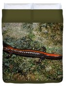 Zig-zag Salamander Duvet Cover