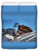 Zion National Park In Winter Duvet Cover