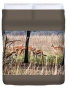 Antidorcas Marsupialis Duvet Cover