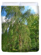 Birch Tree In Afternoon Duvet Cover
