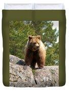 Brown Bear 4 Duvet Cover