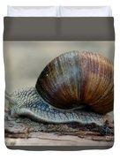 Burgundy Snail Duvet Cover