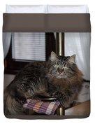 Cat On The Bar Duvet Cover