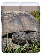 Gopher Tortoise Close Up Duvet Cover