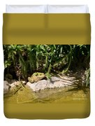 Green Frog Sitting At The Pond Duvet Cover