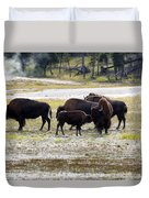 North American Female Buffalo And Her Offspring Showing Affecti Duvet Cover