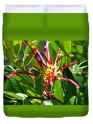 Red Spider Flower Close Up Duvet Cover