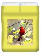 0138 - Cardinal Duvet Cover