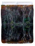 02l Reflections At  Gowen Michigan Duvet Cover