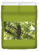 0313-010 - Barred Owl Duvet Cover