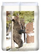 060510-grizzly Back Scratch Duvet Cover
