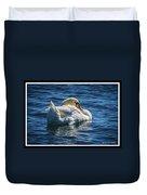 071118-50-c Duvet Cover