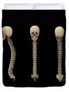 3d Rendering Of Human Vertebral Column Duvet Cover