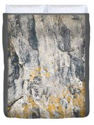 Abstract Texture Old Plaster Duvet Cover