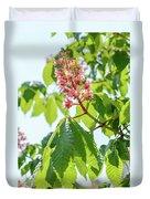 Aesculus X Carnea, Or Red Horse-chestnut Flower Duvet Cover