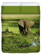 African Elephant In Swamp Duvet Cover