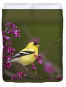 American Goldfinch In Redbud Duvet Cover