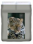 Amur Leopard #2 Duvet Cover