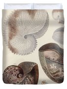 Aquatic Animals - Sea - Shells - Composition - Alien - Wall Art  - Interior Decoration  Duvet Cover
