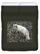 Arctic Fox Duvet Cover