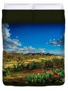 Arizona Sunrise 8 Duvet Cover
