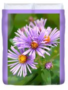 Asters Duvet Cover