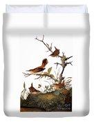Audubon: Wren Duvet Cover