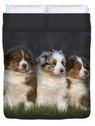 Australian Shepherd Puppies Duvet Cover