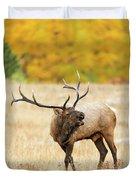 Autumn Bull Elk Bugling Duvet Cover