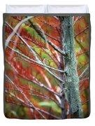 Autumn Colors 25 Duvet Cover
