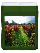 Autumn Vineyard In The Morning  Duvet Cover