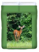 Backyard Deer Duvet Cover