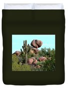 Balancing Act In The Arizona Desert 2 Duvet Cover