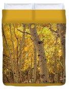 Beautiful Fall Color In California Duvet Cover