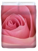 Beautiful Pink Rose Closeup Duvet Cover