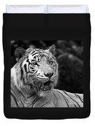 Big Cats 4 Duvet Cover