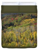 Big Cottonwood Canyon Fall Colors Duvet Cover