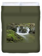 Big Pup Falls 3 Duvet Cover by Michael Peychich