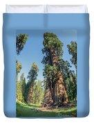 Big Tree Trail - Sequoia National Park - California Duvet Cover
