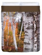 Birch Trees Fall Scenery Duvet Cover