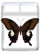 Black And Brown Butterfly Species Papilio Nephelus Duvet Cover