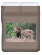 Black Maned Lion Duvet Cover